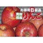 青森県産【B級品 葉とらず サンふじ・10kg(10キロ)・ダンボール詰】わけあり