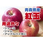 【A級品・紅玉・10kg・ダンボール詰】青森県産