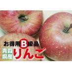 青森県産【B級品・サンふじ・10kg(10キロ)・ダンボール詰】わけあり
