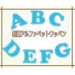 刺繍アルファベットワッペン 青色