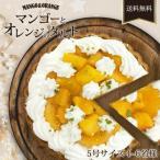 マンゴーとオレンジのタルト 5号サイズ (直径約15cm)