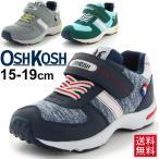 オシュコシュ キッズーシューズ OSHKOSH Bgosh キッズスニーカー 子供靴 男児 ボーイズ 男の子 15cm-19cm 運動靴/OSK-C408