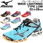 バレーボールシューズ メンズ レディース 当店オリジナルカラー/ミズノ Mizuno WAVE LIGHTNING TYPE LOW 限定 ウエーブライトニング /V1GX200000-AP