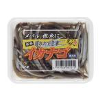 【HAMAICHI】 イカナゴ 冷凍パック