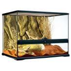 爬虫類 飼育 ケージ リクガメ トカゲ 水槽/ エキゾテラ グラステラリウム6045 PT2610  (別途送料がかかります。)
