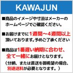 KAWAJUN メディシンボックス 埋込型 DE-03-SS (DE03SS)