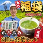 福袋 2021 お茶 緑茶 静岡茶 詰め合せ がぶ飲み大入り茶葉セット 送料無料