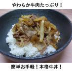 牛丼の素デラックス(185g×10個)