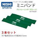 Yahoo!araspo(アラスポ)NISHI ニシスポーツ ミニバンド プレトレーニング(グリーン) NT7930F 2016年モデルチェンジ品 送料無料 インナーマッスル トレーニング チューブ