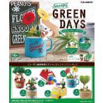 リーメント スヌーピー GREEN DAYS BOX(6個入り)