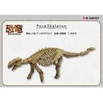 ポーズスケルトン 恐竜106 アンキロサウルス