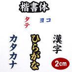ワッペン アップリケ オーダーワッペン 刺繍 ひらがな 漢字 カタカナ 一文字 1文字 複数文字 名前 企業/社名 ネーム 名入れ 名札 ゼッケン アイロン接着 お名前