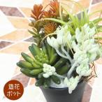 フェイクグリーン アレンジポット(多肉植物系5種) ポット 人工観葉植物 おしゃれ ウォールアート 造花 壁面緑化 パネル ボード  アレンジメント 飾り