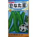 白 なた豆 ナタマメ 種 送料無料