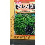 おいしい 枝豆 黒大豆 黒豆 種 送料無料