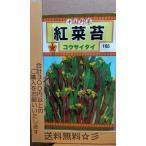 紅菜苔 コウサイタイ 中国野菜 種 郵便は送料無料