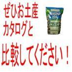 ハワイ お土産 マウナロア マウイオニオン&ガーリック STAND-UP BUGS 11.0oz