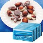 ケアンズ シーシェルチョコレート 6箱セット(オーストラリア お土産 オーストラリア 土産) 通販