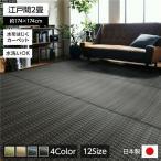 ラグマット | 洗える PPカーペット アウトドア ペット ブラウン 江戸間2畳(約174×174cm)