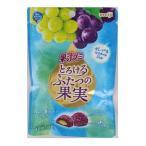 明治  果汁グミとろけるふたつの果実グレープ&マスカットジ  52g×20個  【送料無料】