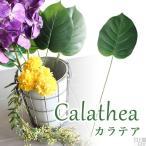 カラテア 1本 造花 アートフラワー 安い 観葉植物 人工植物 Calathea C フラワーアレンジメント 材料