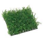 母の日 ギフト 花 光触媒 ミニグリーン 観葉植物 人工観葉植物 壁掛け 壁面 造花 インテリア ミニユ-カリミックスマット