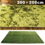 シャギーラグ グリーン カーペット ホットカーペット対応 正方形 おしゃれ シンプル 200×200cm GRASS RUG