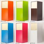 ゴミ箱 分別 スリム 20cm スイング ごみ箱 木製 北欧 ダストボックス 8L ヤマト工芸 YK12-105 DOORS mini