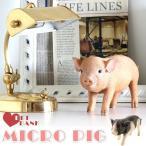 ショッピング貯金箱 貯金箱 ブタ コインバンク おしゃれ おもしろ アニマル アニマルコインバンク PET BANK MICRO PIG ピンク/スポット