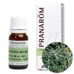 プラナロム(PRANAROM) 精油/ミルラ エッセンシャルオイル/Essential Oil