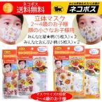 アンパンマン ちいさな 立体マスク 使い切り 使い捨て 2〜4歳のお子様用 2柄(5枚入り)×2(マスク計20枚)送料無料