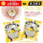 ワセリン 柚子(ゆず)ユズ2個 日本製 保湿成分配合 秋冬の乾燥対策に人気 乾燥肌 おすすめ 送料無料
