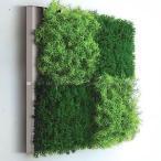 人工観葉植物の壁掛け リーフアートパネル ウォールグリーン 4A ホワイト