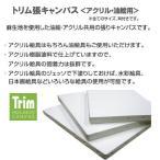 ホルベイン Trim(トリム)張りキャンバス(麻100%)中目 F10 [油彩・アクリル用]