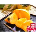 たねなし柿 2L-33個約7.5Kg 10/上旬〜11/初旬