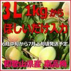 生梅優品3L-ほしいだけ1kg単位、梅干・梅酒・他、有機肥料使用/和歌山県産、南高梅青梅(緑か...