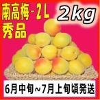 南高梅秀品2L-2kg梅干・梅酒・他、有機肥料使用/紀州和歌山県産青梅