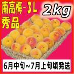 南高梅秀品3L-2kg梅干・梅酒・他、有機肥料使用/紀州和歌山県産青梅