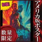 映画ポスター ブレードランナー 2049 Blade Runner /インテリア アート おしゃれ フレームなし /ADV-両面