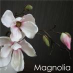 マグノリアのデザインポット/モクレン/木蓮/お洒落な花器付 消臭効果のCT触媒(無光触媒)加工済み
