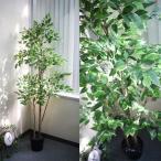 人工観葉植物 造花 175cmフィカスツリー ベンジャミンツリー 高級那智黒石付き 光触媒を超える消臭効果 地域限定