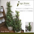 人工観葉植物/アイビーとツイグのツリーポット Sサイズ(別途料金で、無光触媒/CT触媒加工可)