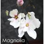 人工観葉植物/造花 マグノリアのスタイリッシュポット/木蓮/IKEA イケアデザインポット/光触媒を超える消臭効果