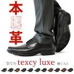 ビジネスシューズ メンズ ローファー 革靴 テクシーリュクス 3E ワイド幅 2017 春 春夏 新作