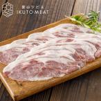 猪肉 肩ロース(特上)400g ジビエ料理 IKUTO MEAT