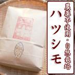 平成28年産 自然栽培米 ハツシモ 白米 玄米(精米無)農薬不使用 無肥料 送料無料 10kg