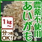 平成28年産 玄米(精米無)農薬不使用 白米 あいがも農法 お米 1kg〜当日精米
