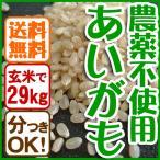 平成28年産 送料無料 玄米(精米無)農薬不使用 あいがも農法 お米 コシヒカリ 白米 有機肥料 29kg 当日精米