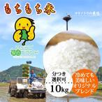 新米 お米 10kg もちもち米 玄米 白米 令和2年産 当日精米 送料無料