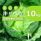 キャベツ 農薬90%カット 特別栽培【10kg】